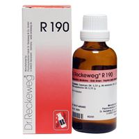 Picture of Dr. Reckeweg R 190 Digestion Drops